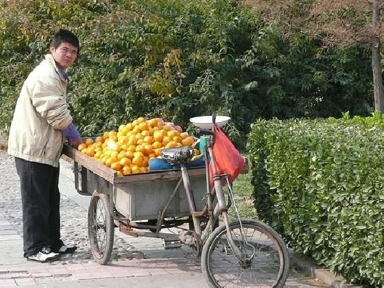 http://www.ragusanews.com//immagini_articoli/24-02-2017/siciliani-vendono-arance-cinesi-420.jpg