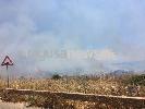 http://www.ragusanews.com//immagini_articoli/24-06-2017/incendio-costa-carro-100.jpg