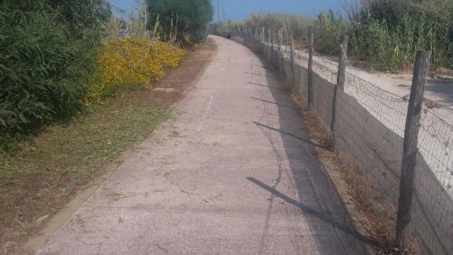 http://www.ragusanews.com//immagini_articoli/24-06-2017/pista-ciclabile-marinasampieri-abbate-pulisco-500.jpg