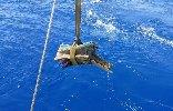 https://www.ragusanews.com//immagini_articoli/24-07-2019/il-mare-restituisce-due-rostri-guerra-punica-100.jpg