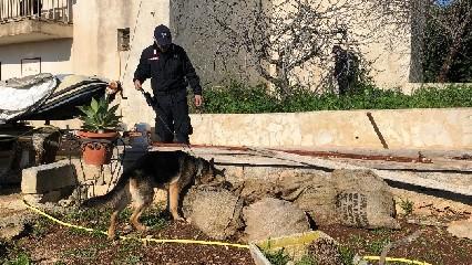 https://www.ragusanews.com//immagini_articoli/24-07-2020/condannati-i-ladri-delle-campagne-iblee-240.jpg