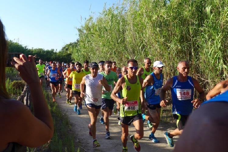 http://www.ragusanews.com//immagini_articoli/24-08-2015/claudia-finielli-prima-fra-le-donne-nel-running-dell-irminio-500.jpg