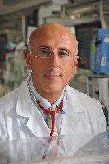https://www.ragusanews.com//immagini_articoli/24-09-2019/neonatologia-il-prof-fabio-mosca-neonato-politiche-sanitarie-240.jpg