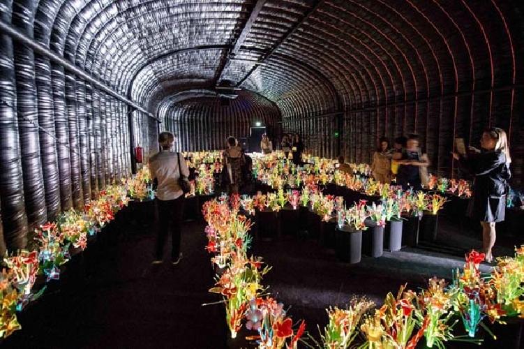 https://www.ragusanews.com//immagini_articoli/24-10-2015/cogli-a-venezia-i-fiori-di-vasconcelos-500.jpg