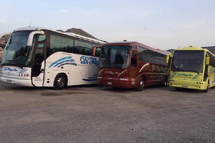 https://www.ragusanews.com//immagini_articoli/24-10-2020/i-bus-turistici-siciliani-in-attesa-del-fondo-perduto-500.jpg