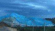https://www.ragusanews.com//immagini_articoli/25-02-2019/maltempo-danni-serre-marina-modica-100.jpg