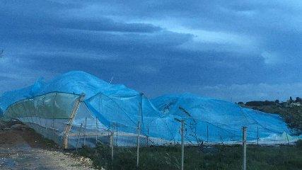 https://www.ragusanews.com//immagini_articoli/25-02-2019/maltempo-danni-serre-marina-modica-240.jpg