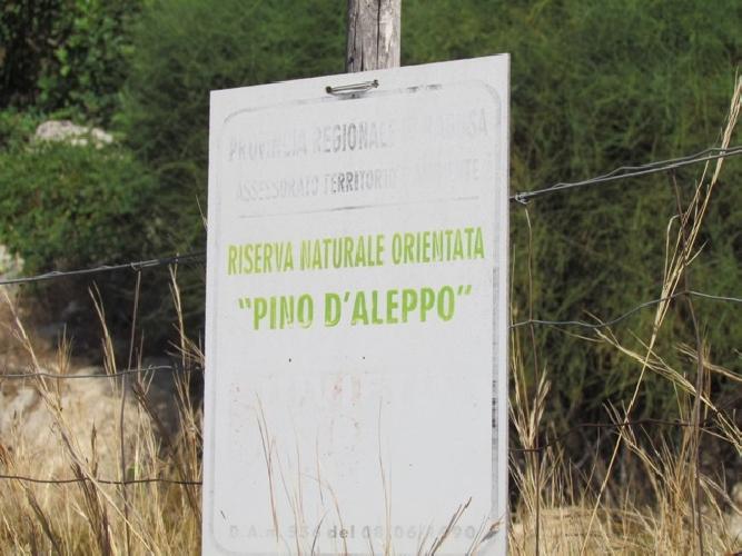 https://www.ragusanews.com//immagini_articoli/25-04-2016/motocross-abusivo-nella-riserva-pino-d-aleppo-500.jpg