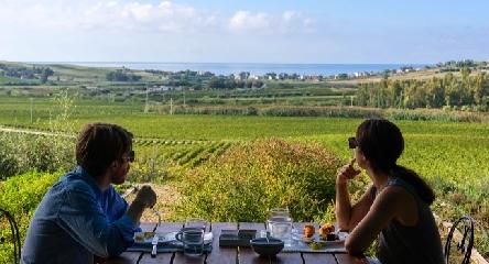 http://www.ragusanews.com//immagini_articoli/25-05-2017/cantine-aperte-sicilia-sudest-240.jpg