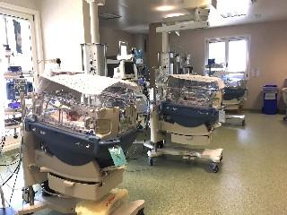 https://www.ragusanews.com//immagini_articoli/25-05-2020/tre-neonati-con-problemi-di-salute-operati-a-ragusa-con-successo-240.jpg