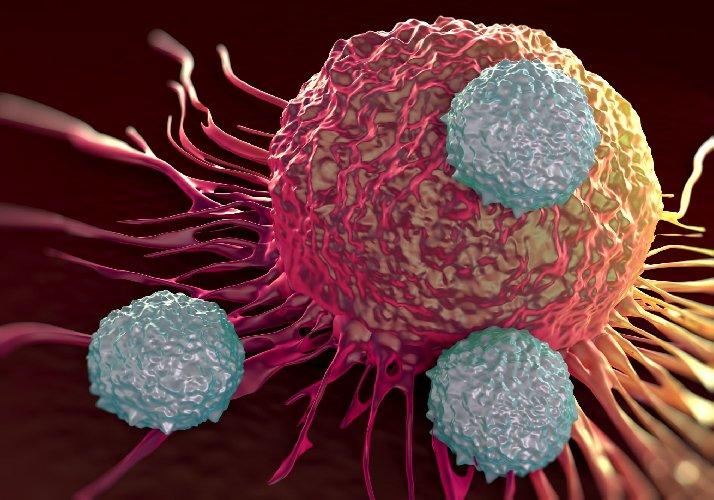 https://www.ragusanews.com//immagini_articoli/25-06-2019/arriva-in-italia-car-t-il-farmaco-che-ferma-i-tumori-sangue-500.jpg