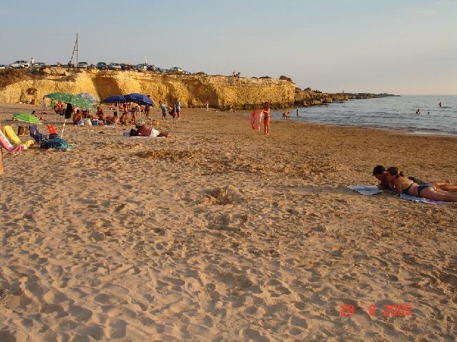 http://www.ragusanews.com//immagini_articoli/25-07-2014/la-chiazze-nel-mare-di-randello-500.jpg