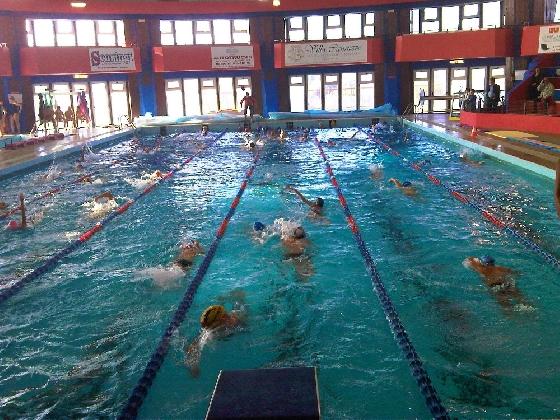 http://www.ragusanews.com//immagini_articoli/25-07-2016/modica-furto-in-piscina-comunale-presi-i-responsabili-420.jpg