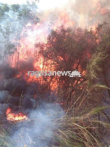 https://www.ragusanews.com//immagini_articoli/25-07-2018/riprende-incendio-bosco-pietro-arrivo-canadair-foto-500.jpg