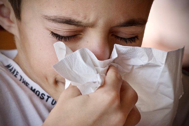 https://www.ragusanews.com//immagini_articoli/25-09-2019/dieta-per-combattere-il-raffreddore-500.jpg