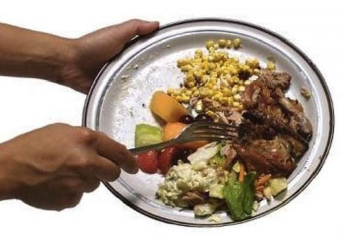 https://www.ragusanews.com//immagini_articoli/25-10-2013/liste-pro-ammatuna-sel-e-il-piatto-dove-si-e-mangiato-500.jpg