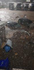 https://www.ragusanews.com//immagini_articoli/25-10-2019/alluvione-a-pozzallo-auto-sepolte-fango-video-240.jpg
