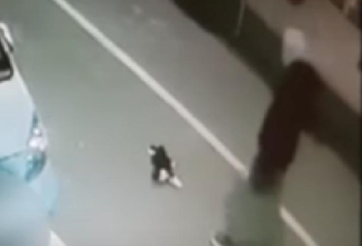 https://www.ragusanews.com//immagini_articoli/25-11-2018/rumeno-uomo-torturato-ucciso-gatto-500.png
