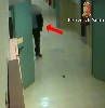 https://www.ragusanews.com//immagini_articoli/26-03-2016/medico-all-ospedale-di-comiso-assenteista-per-giocare-alle-slot-100.jpg