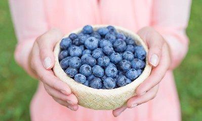 https://www.ragusanews.com//immagini_articoli/26-03-2019/la-dieta-dei-mirtilli-240.jpg