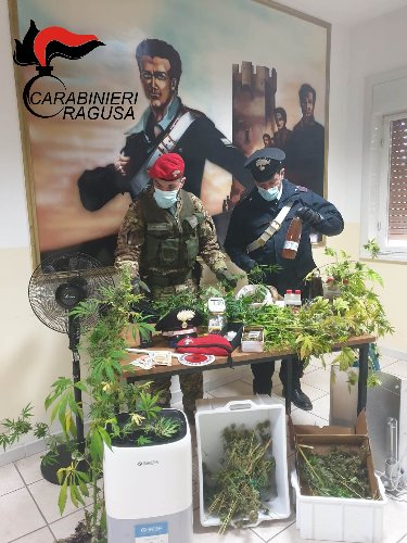 https://www.ragusanews.com//immagini_articoli/26-03-2021/1616745736-piantagione-di-marijuana-nascosta-in-casa-arrestato-48enne-1-500.jpg