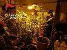 https://www.ragusanews.com//immagini_articoli/26-03-2021/piantagione-di-marijuana-nascosta-in-casa-arrestato-48enne-100.jpg