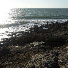 https://www.ragusanews.com//immagini_articoli/26-04-2018/ragusano-solo-pochi-metri-costa-sono-balneabili-240.jpg