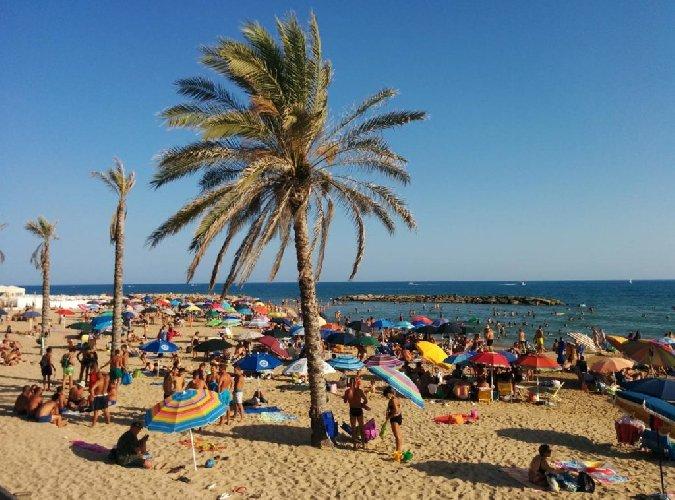 https://www.ragusanews.com//immagini_articoli/26-04-2019/dormire-a-marina-di-ragusa-in-agosto-costa-119-euro-500.jpg