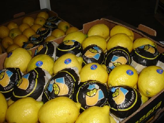 http://www.ragusanews.com//immagini_articoli/26-08-2016/non-comprate-i-limoni-dell-argentina-420.jpg