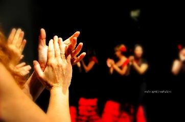 http://www.ragusanews.com//immagini_articoli/26-09-2017/scicli-appuntamento-flamenco-240.jpg