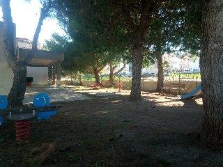 https://www.ragusanews.com//immagini_articoli/26-10-2018/alberi-tagliare-comiso-replica-gaglio-240.jpg