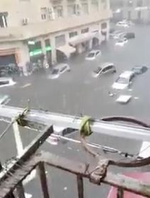 https://www.ragusanews.com//immagini_articoli/26-10-2021/alluvione-catania-le-auto-galleggiano-per-strada-tutti-i-video-280.jpg