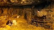 http://www.ragusanews.com//immagini_articoli/26-12-2015/piace-il-presepe-in-grotta-a-ibla-100.jpg