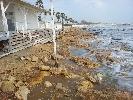 https://www.ragusanews.com//immagini_articoli/27-01-2015/marina-di-ragusa-la-spiaggia-rosicata-dal-mare-100.jpg