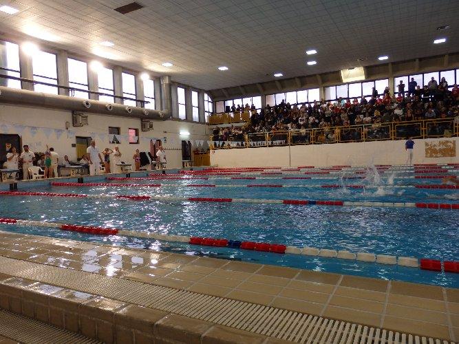 https://www.ragusanews.com//immagini_articoli/27-01-2020/i-disservizi-piscina-comunale-di-ragusa-500.jpg