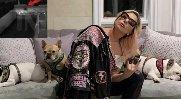 https://www.ragusanews.com//immagini_articoli/27-02-2021/ritrovati-i-cani-di-lady-gaga-100.jpg