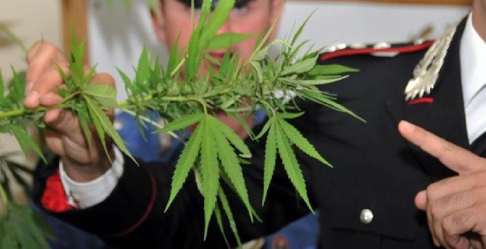 https://www.ragusanews.com//immagini_articoli/27-05-2014/droga-2-giovani-segnalati-a-scoglitti-500.jpg