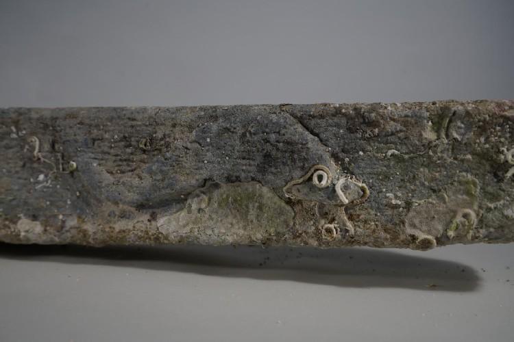 https://www.ragusanews.com//immagini_articoli/27-05-2020/1590566658-trovata-un-ancora-ellenistico-romana-nel-mare-siciliano-foto-1-500.jpg