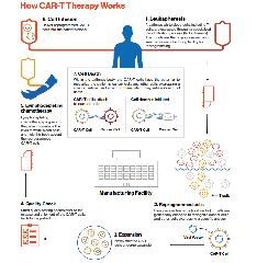 https://www.ragusanews.com//immagini_articoli/27-08-2018/1535365718-tumori-arriva-terapia-cellule-paziente-1-240.png