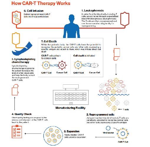 https://www.ragusanews.com//immagini_articoli/27-08-2018/1535365718-tumori-arriva-terapia-cellule-paziente-1-500.png