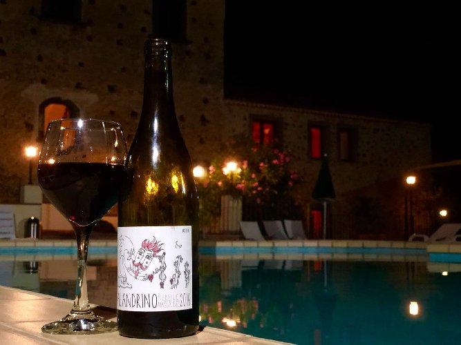 https://www.ragusanews.com//immagini_articoli/27-08-2018/malandrino-vino-naturale-etna-500.jpg