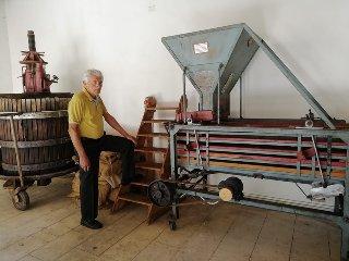 https://www.ragusanews.com//immagini_articoli/27-09-2019/1569598394-ecco-il-museo-mandorla-foto-1-240.jpg