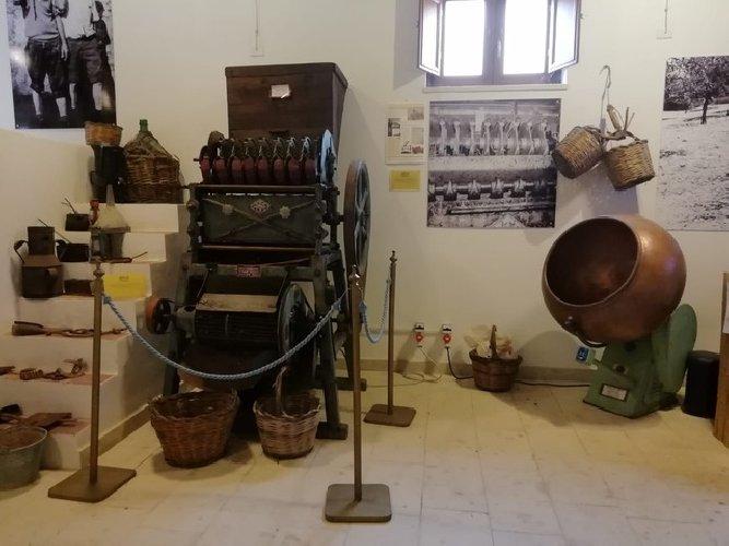 https://www.ragusanews.com//immagini_articoli/27-09-2019/ecco-il-museo-mandorla-foto-500.jpg
