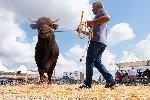 https://www.ragusanews.com//immagini_articoli/27-09-2019/inaugurata-la-fiera-agricola-a-ragusa-il-fotoracconto-100.jpg