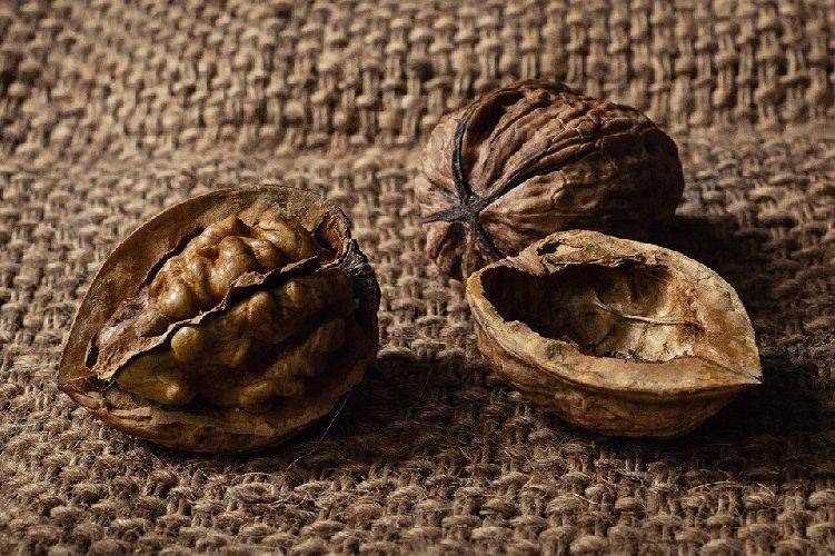 https://www.ragusanews.com//immagini_articoli/27-09-2019/nutrizione-7-alimenti-d-oro-che-aiutano-a-mantenere-giovane-il-cervello-500.jpg