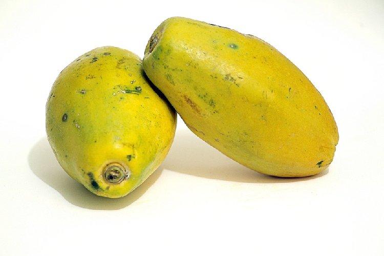 dieta della papaya per dimagrire