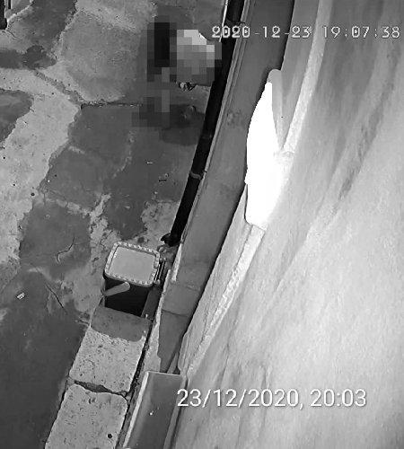 https://www.ragusanews.com//immagini_articoli/27-12-2020/ecco-cosa-ha-ripreso-la-mia-telecamera-di-videosorveglianza-500.jpg