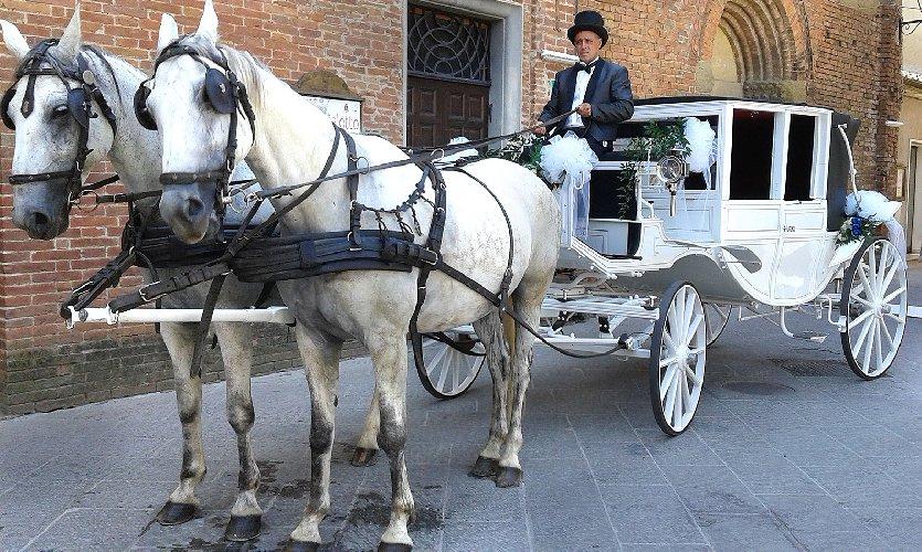 https://www.ragusanews.com//immagini_articoli/28-05-2018/cavalli-carrozze-castello-donnafugata-500.jpg
