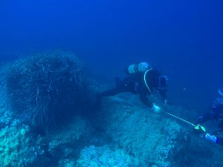 https://www.ragusanews.com//immagini_articoli/28-10-2019/archeologia-sopralluogo-sottomarino-ricerca-di-reperto-di-nave-240.jpg