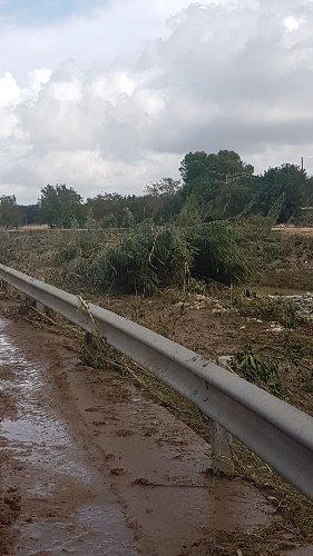 https://www.ragusanews.com//immagini_articoli/28-10-2019/danni-in-agricoltura-confagricoltura-le-colpe-consorzio-500.jpg